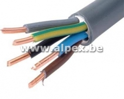 Câble XVB 5G10mm. 1 Mètre